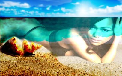 Exercise seashells 3