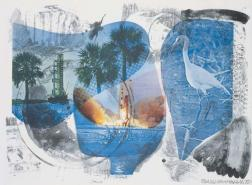 robert-rauschenberg-local-means-70-e005